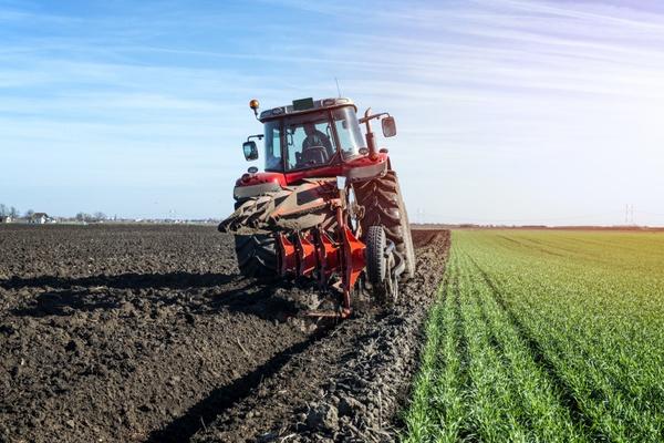 IVZ 33 | Organic Farming